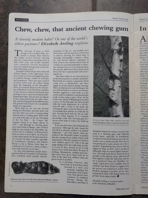 Article from British Aracheology